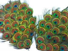 1 Piece - Natural Peacock Tiny Eyes Feather Pad Wedding Costume Halloween Craft