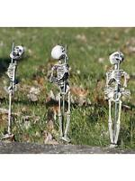 Set of 3 CREEPY Staked Skeletons Halloween Decoration Prop Pathway Markers