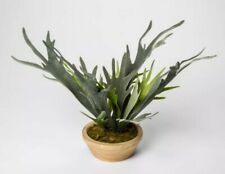 "THRESHOLD Artificial Staghorn Fern In Pot | Green/Natural |  14.5""x14"" 