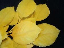 Vintage Millinery Flower Leaf Silk 2Layer K21 Yellow