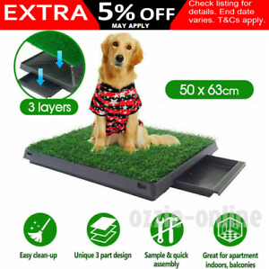 Indoor Pet Potty Trainer Grass Mat Dog Puppy Training Pee Poo Patch Pad Clean