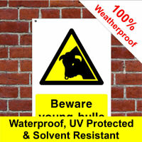 Beware young bulls sign or sticker Farm Health and safety Liability Notice COU15