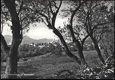 cartolina SINISCOLA panorama