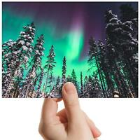 """Forest Northern Lights Nature Small Photograph 6""""x4"""" Art Print Photo Gift #16711"""