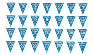 Happy Birthday Bunting Blue Party Banners 11 Flags Sparkle All Ages 3.9M 12.8ft