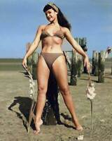 Bettie Page 8x10 RARE COLOR Photo 618