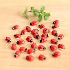 Ladybug For Miniature Fairy Garden Ornament Dollhouse DIY Craft Plant Figurine