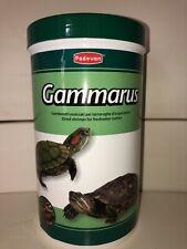 mangime tartarughe acqua Grammarus
