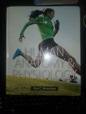 Human Anatomy & Physiology by Amerman, Erin C.