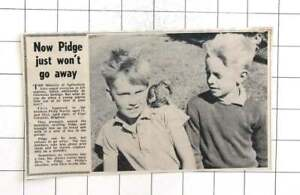 1963 Brothers Philip And Glyn Martin From Brighton With Homeless Pigeon Pidge