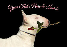 PERSONALISED ENGLISH BULL TERRIER DOG VALENTINE MOTHERS DAY BIRTHDAY etc CARD