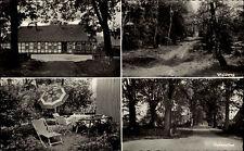 Hagen Sprakensehl s/w AK ~1960/70 Pension Mayer Waldweg Eichenallee Gartenpartie
