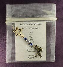 RODEO STAR LUCKY CHARM Horse Amulet Talisman Ladybug Cowgirl Barrels Penning
