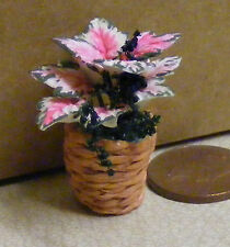 1:12 Pink & White Poinsettia Flowers In A Basket Tumdee Dolls House Miniature 80
