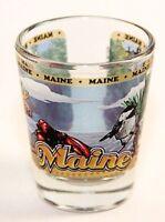 MAINE STATE WRAPAROUND SHOT GLASS SHOTGLASS