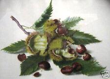 Chesnuts-Castanea Sativa By Riefel