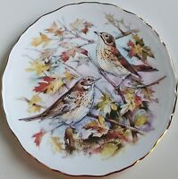 Vintage Royal Albert Garden Birds No. 1 Thrush 1989 Collector Plate