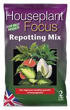 Houseplant Focus Repotting Mix 2L - Compost for House Plants