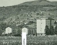 Bötzingen am Kaisertuhl - Totenkopf - Ortsansicht - um 1965   S 6-22