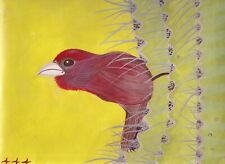 """House Finch Original 12""""w x 9""""h Painting by Incarcerated Artist 444"""