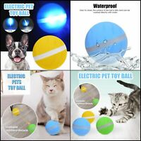 Wicked Ball New Design Pet Dog Cat Toys Interactive Companion Funny Electri 2019