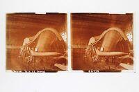 Museo Histoire Naturale Balena Parigi Placca Stereo Vintage Positivo 6x13cm