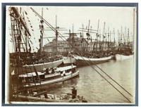 """France, Port en jour de fête. Bateau """"Albatros"""" de Dinard   Vintage citrate prin"""