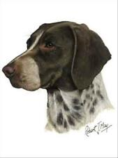 Pointer Dog Robert May Art Greeting Card Set of 6