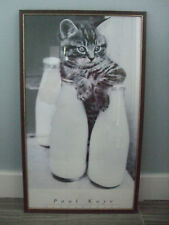 Cat & imágenes de la botella de leche