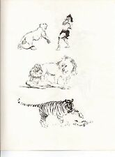 "1978 Full Color Plate ""Sketch Work Tigers & Lions"" by Frank Frazetta Fantastic"
