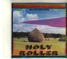 (DR983) Thao & The Get Down Stay Down, Holy Roller - 2012 DJ CD