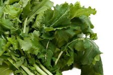 Seven Top TURNIP 200+ Organic  seeds vitamin packed Delicious  greens