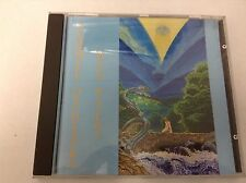 4003099893429 Deep Waters by Sunwheel Orchestra - FAST POST CD