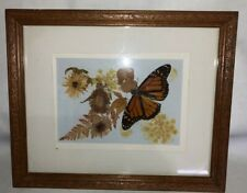 Vintage Picture Real Butterfly And Floral Pressed Flowers Beautiful 11.5 X 9.25