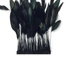 15 Pcs.Black Stripped Coque Rooster Feathers - US Seller