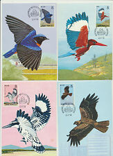 Hong Kong Indigenous  Birds Complete Set of 4 1988 Maxi Cards #519- 522 LOT 942