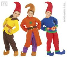 WIDMANN Costume gnomo nano sette nani elfo carnevale bambino 3-4 anni 110 4374W