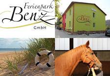 Familien Kurzurlaub Insel Usedom Reiterferien 5 Tage Ferienpark Benz Ostsee FeWo