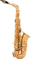 Saxophon a&S Arnolds & Sons AAS-110 Es-Alt Saxophon inkl. Koffer und Mundstück