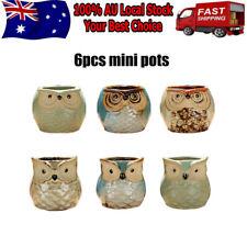 6pcs Mini Owl Plant Pots Flower Succulent Plants Ceramic Breathable Pot Decore