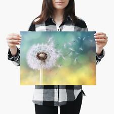 A3  Pretty Dandelion Plant Live Cool - Size A3 Poster Print Photo Art Gift #3863