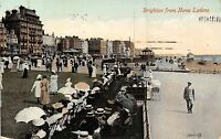 POSTCARD    SUSSEX   BRIGHTON  from  Hove  Lawns