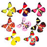 1Pc Card Magic Flying out Butterfly Surprise Magic Props Mystical Trick WA