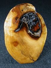 New Souvenir Made In Oregon Madrone Head Geode Burl Wood Knot