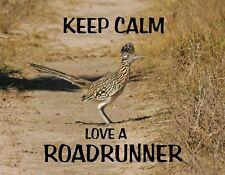 METAL REFRIGERATOR MAGNET Keep Calm Love A Roadrunner Bird Humor Birds