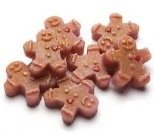 Desmond's Candles Gingerbread Man 4 oz. Fake Food Wax Embeds