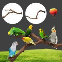 Parrot Perch Pet Bird Grape Wood Cage Stand Stick Platform Bird Habitats Durable