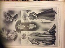 m12g ephemera 1907 one page women fashion autumn hats and wraps