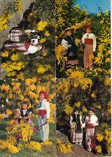Lot 4 cartes postales anciennes NICE enfants en costumes niçois