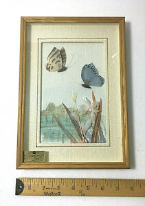"""Collectible Feather Art CAC Butterfly Framed Matted Wall Mounted 11"""" H x 8"""" W"""